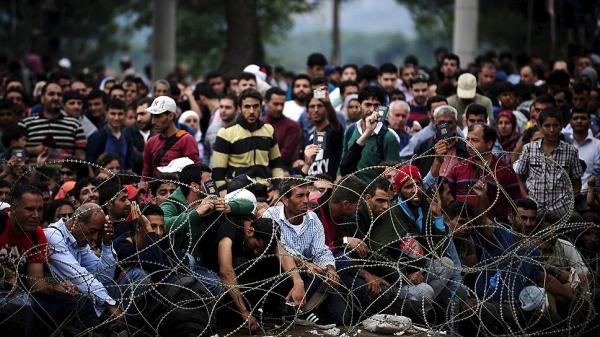 Мировой миграционный кризис: пути решения